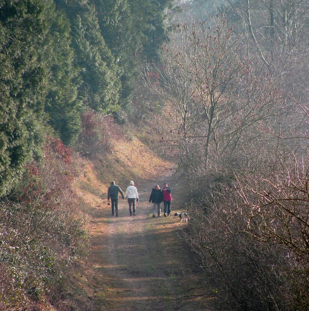 walkers by Caroline Anderson