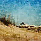 Ft Morgan Beach House by Jonicool