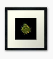 Photon Echo Framed Print