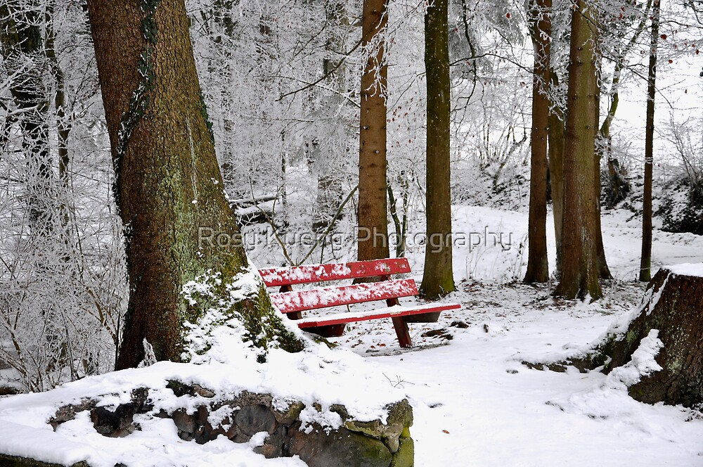 Waiting for the  Spring by Rosy Kueng Photography