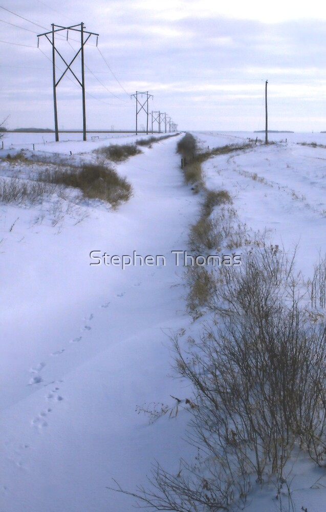 Drainage Ditch by Stephen Thomas