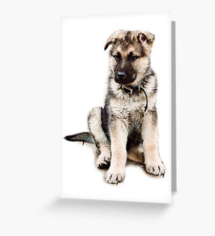 Taz Greeting Card