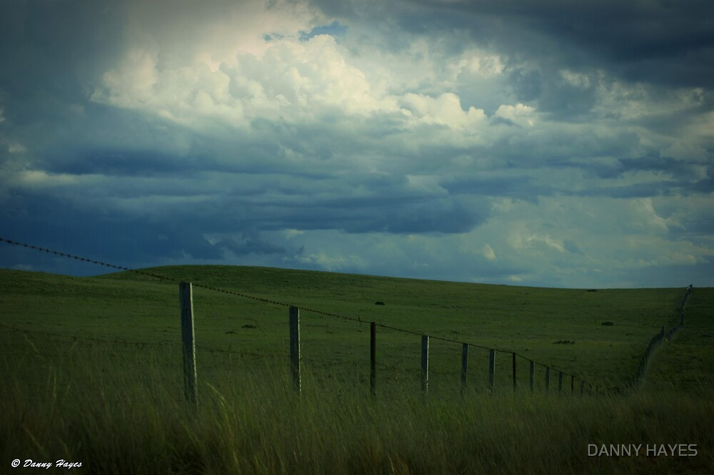 Line of DE-Fence by DANNY HAYES