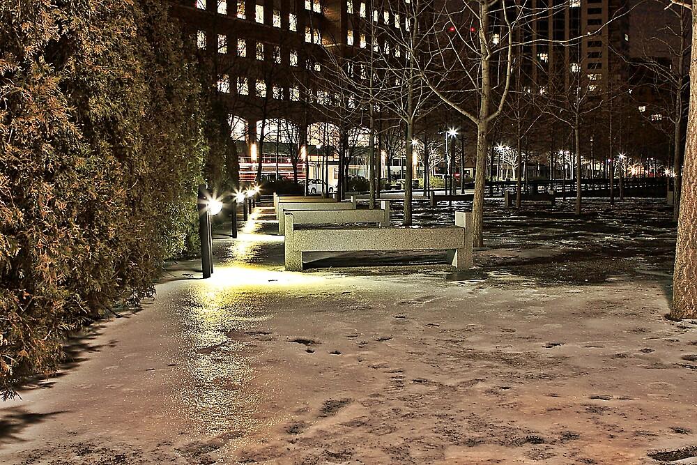 Cold by pmarella