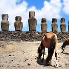 Horse and Mohai in Easter Island by Monica Di Carlo