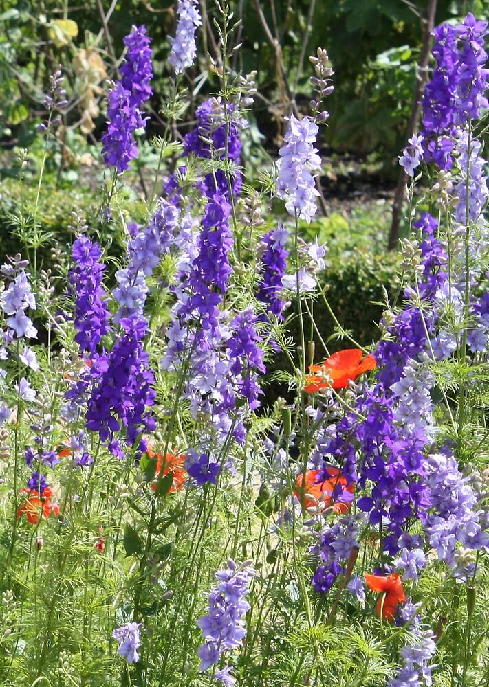 Pretty in Lilac by sjmphotos