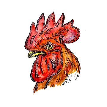 Gallo Rojo by Pintarrajearte