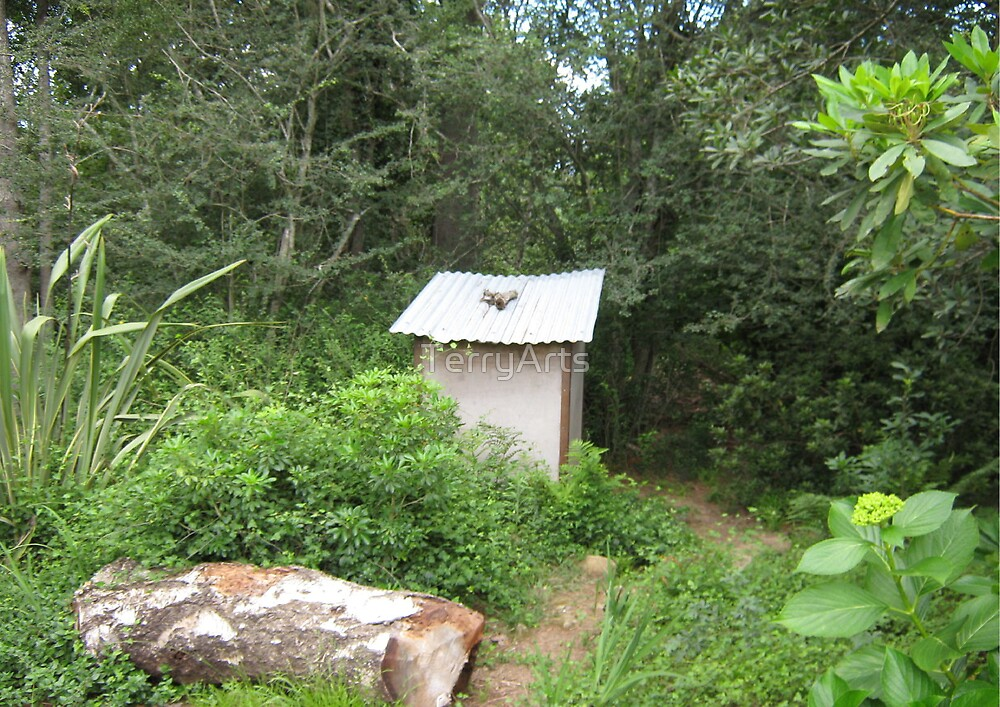 loo in Hogsback, by 9 year old Zooty by Teresa Schultz
