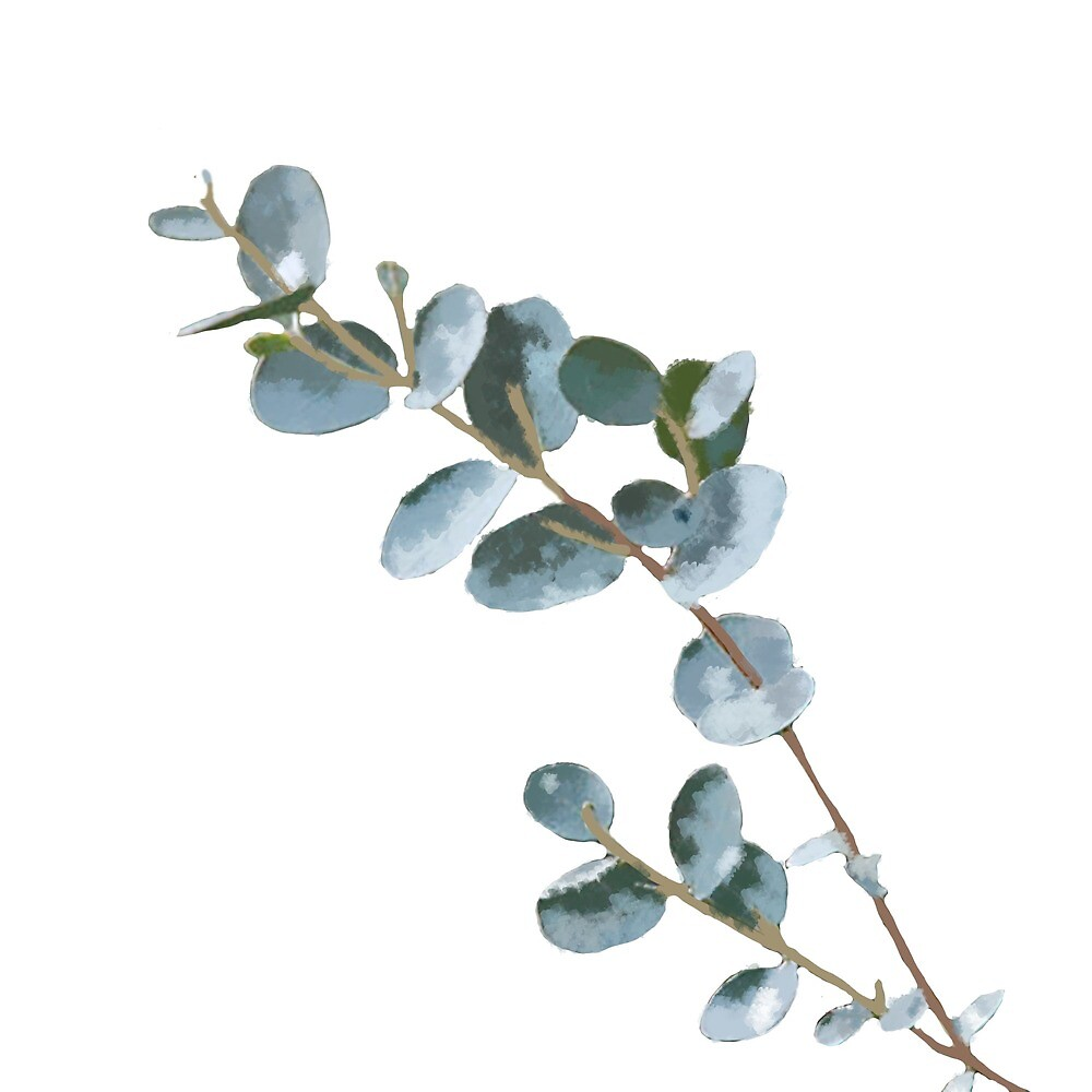 Quot Watercolor Eucalyptus Quot By Bshac Redbubble