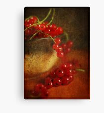 Red Currant  Canvas Print