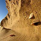 Shellves by lowangle