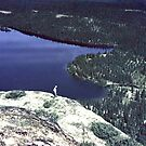 Labrador Summer by George Cousins