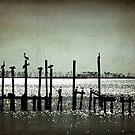 Pole Guardians by Jonicool