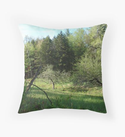 The Apple Orchard  Throw Pillow