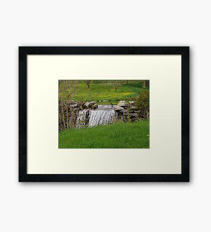 Dandelion Falls Framed Print