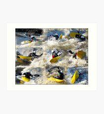 Kayak Mania  Art Print
