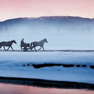 winter landscape by ARGO