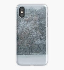Fall Snowstorm iPhone Case/Skin