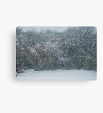 Fall Snowstorm Canvas Print