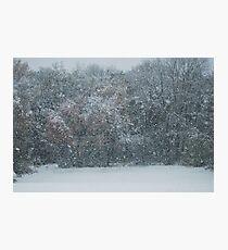 Fall Snowstorm Photographic Print