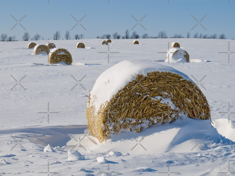 Snow bales by Al Mullen