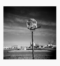Basketball Net Survivor Photographic Print