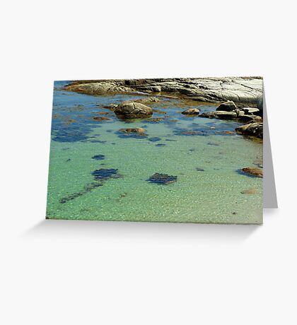 Ripples in the Tide Greeting Card