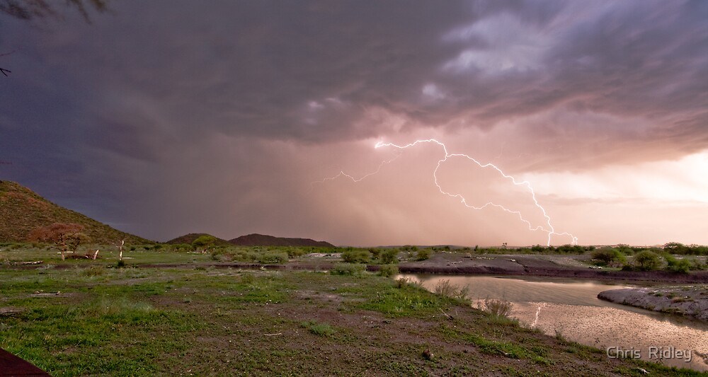 Reflected lightning over the savannah - South Africa by Chris  Ridley