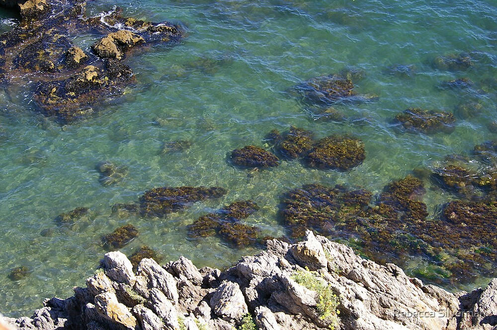 Clear to the Rocks by Rebecca Silverman