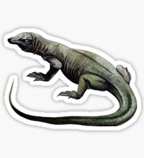 Dragon de Komodo Pegatina