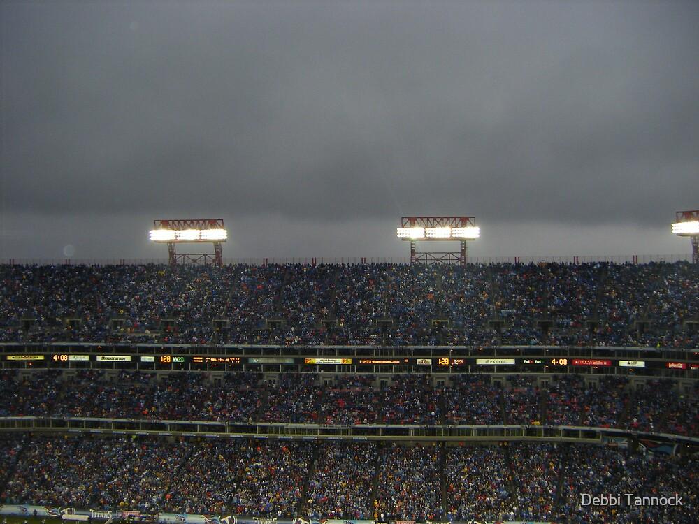 Titans vs Ravens-Rain by Debbi Tannock