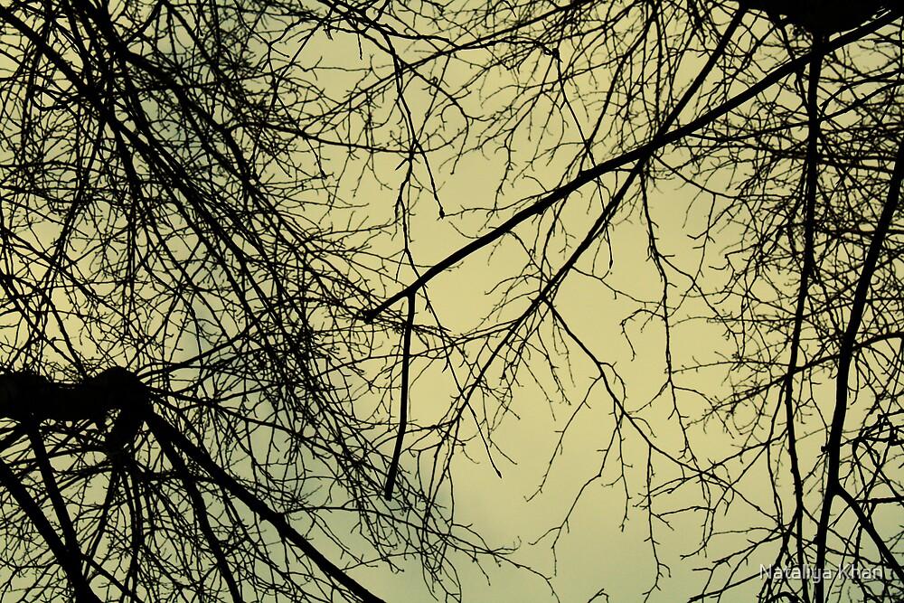 {lead me} by Nataliya Khan