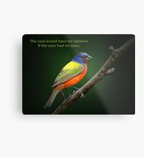 The soul would have no rainbow . . . Metal Print