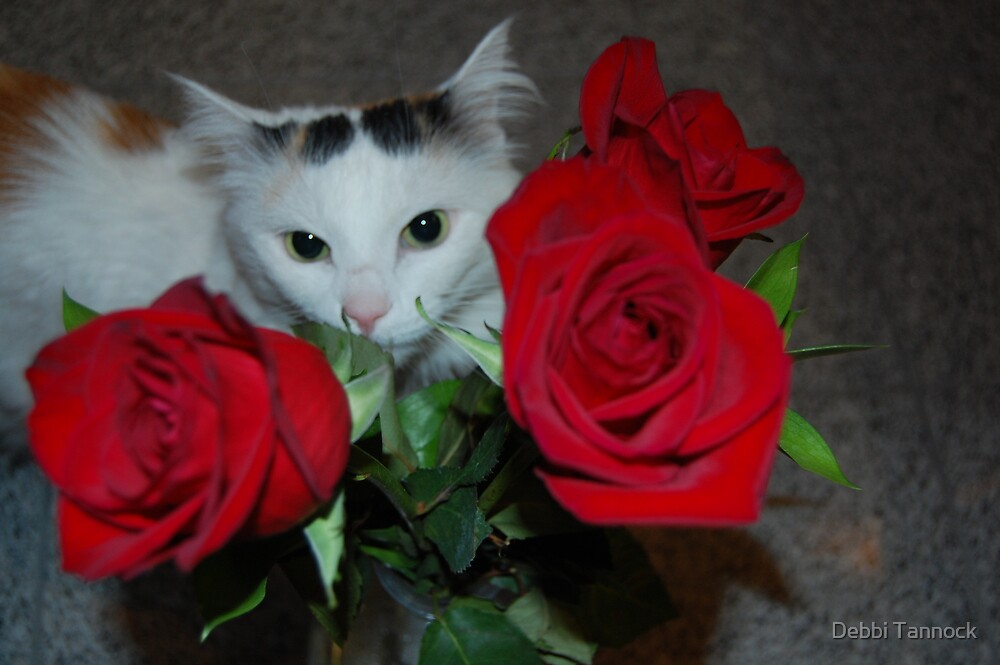 Kitty w/ Roses by Debbi Tannock
