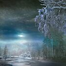 Moonlight Cabin by Igor Zenin