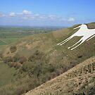 White Horse, Westbury by RedHillDigital