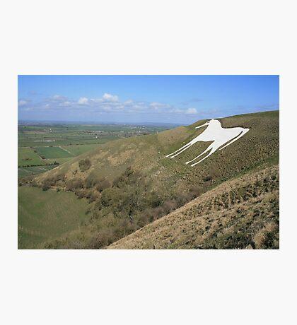 White Horse, Westbury Photographic Print