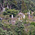 Bolton Street Cemetery - Wellington - New Zealand by TonyCrehan
