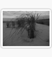 Dune Grass Sticker
