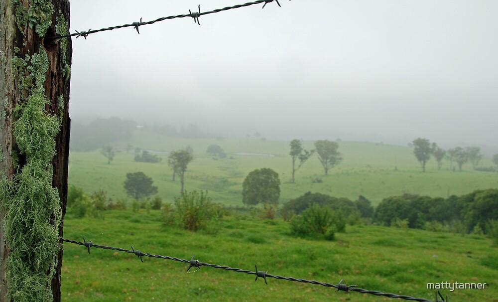 Mountain Mist by mattytanner