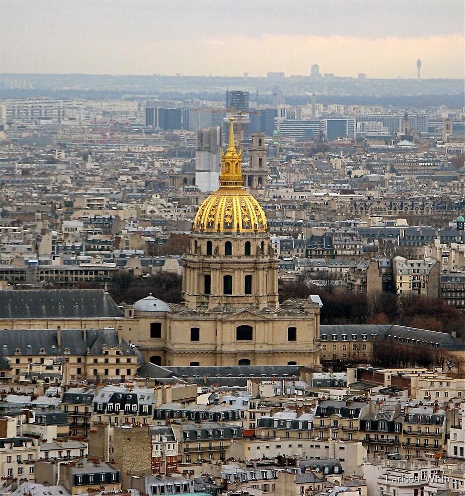 Dome of Les Invalides by Larissa  Plain