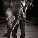 Behemoth by Scott Carr
