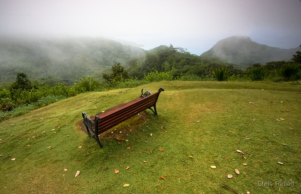 Bench looking over the tropical forest by Chris  Ridley
