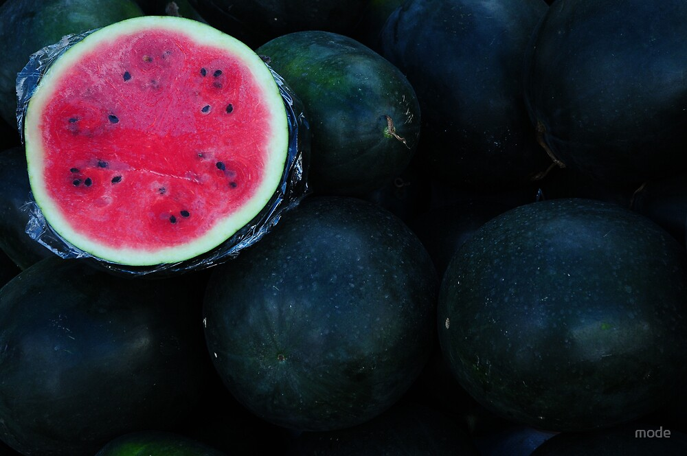 red watermelon by mode