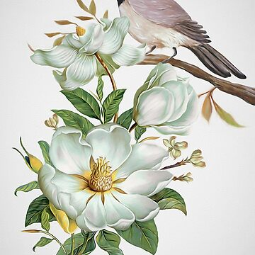 Carolina Chickadee and Magnolia Flowers by Skyviper