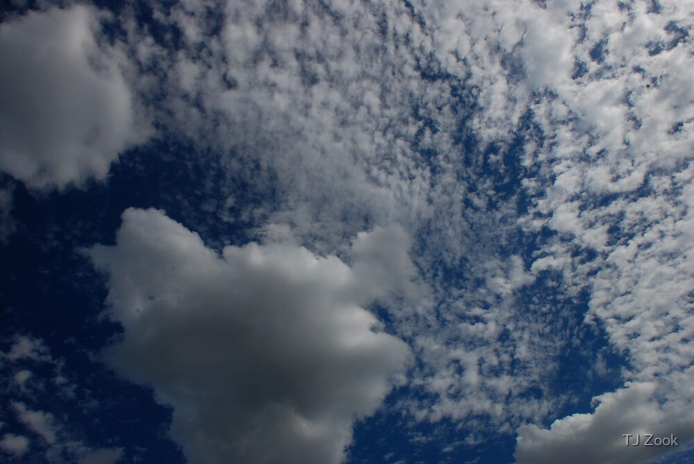 Heaven by TJ Zook