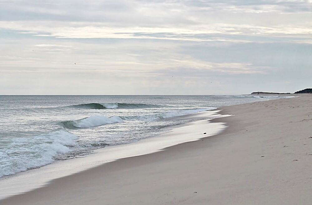 Dreaming of the beach by Linda Crockett