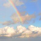Rainbow by Monica Di Carlo