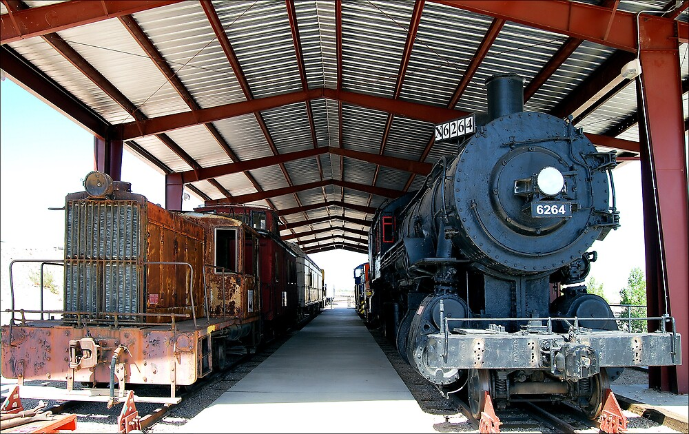 The Train Shed by Donnie Shackleford