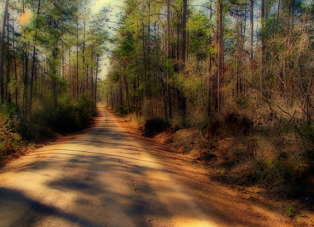One Road Less Traveled by DottieDees
